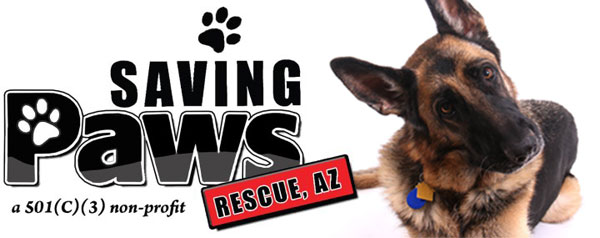 Saving Paws Rescue – Arizona